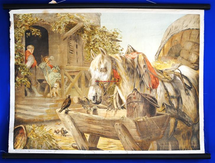 (SCHOOLPLAAT - SCHOOL POSTER / MAP - LEHRTAFEL) Tavern with horse and coachman ( having a pint ) Herberg met paard en koetsier ( met een pint )