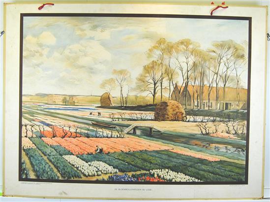 (SCHOOLPLAAT - SCHOOL POSTER / MAP - LEHRTAFEL) De Bloembollenvelden bij Lisse ( A.L. Koster )                Aardrijkskundige wandplaten van Nederland