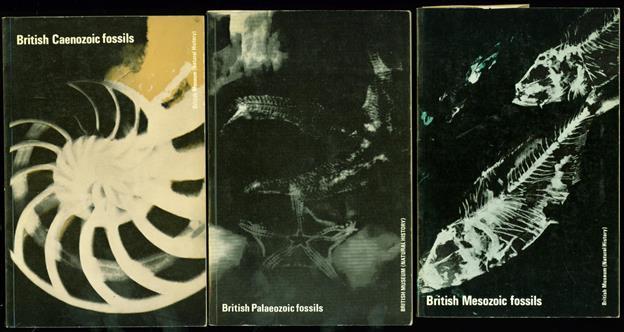 British Paleozoic fossils. + British Caenozoic fossils. + British Mesosoic fossils.