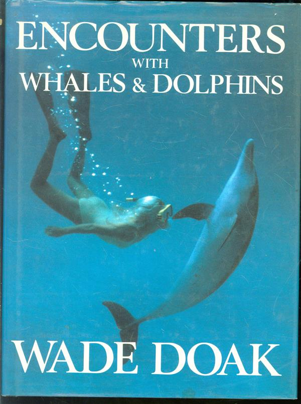 Encounters with whales & dolphins