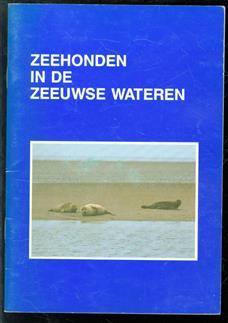 Zeehonden in de Zeeuwse wateren