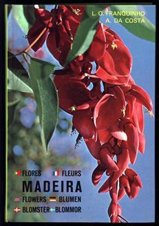 Madeira : Plantas e flores. Plantes et fleurs. Plants and flowers. Pflanzen und Blumen. Planter og blomster. Växter och blommor