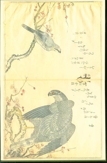 Utamaro : a chorus of birds